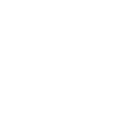 Storage Hosting Solutions