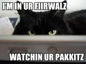 firewall-lolcat