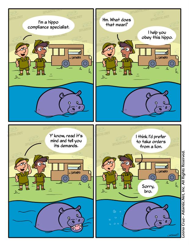 hippo compliance humor