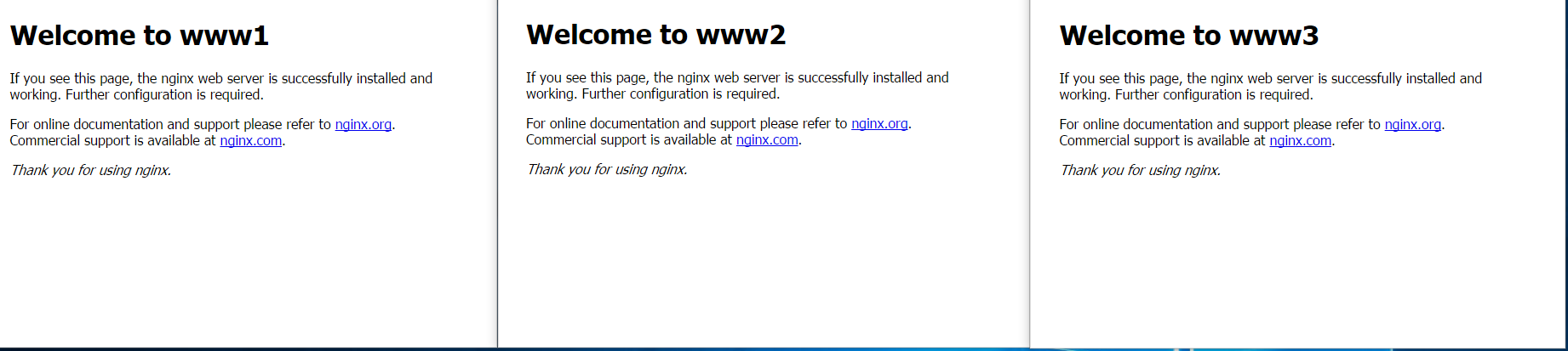 An example of my web servers: WWW1, WWW2 and WWW3