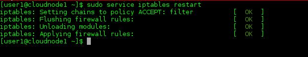 Sample Service iptables restart Output
