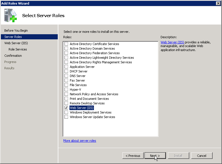 Select Web Server (IIS)
