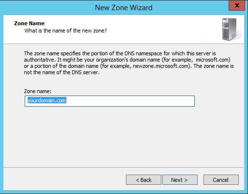 This is the zone name insert field when configuring DNS in Windows Server 2012