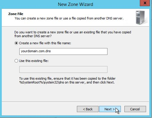 Creating a Zone file when configuring DNS in Windows Server 2012