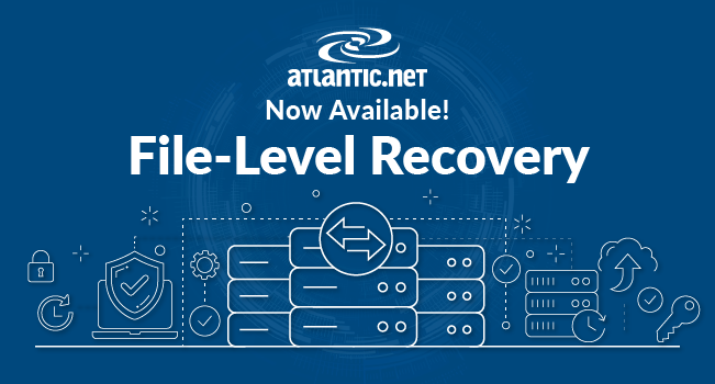 File Level Recovery
